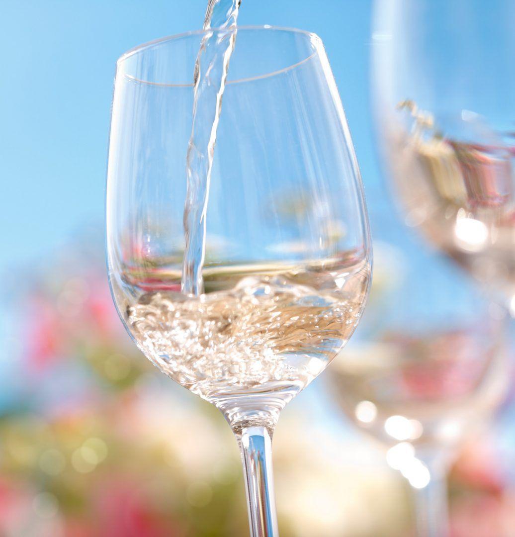 Wein Wein anbauen Weinbauer