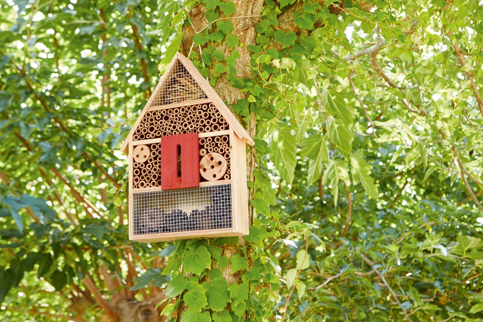 Bienenhaus Insektenhotel Garten