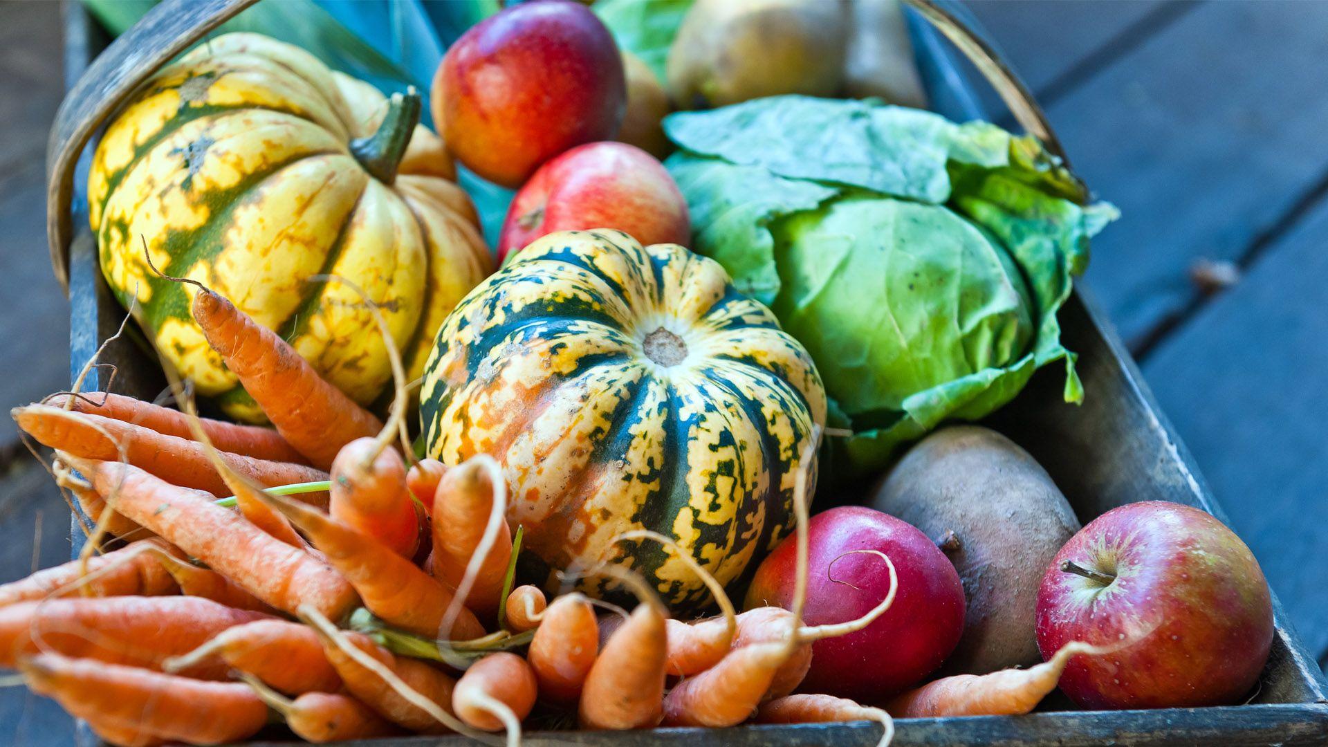 Iss saisonal! – Obst und Gemüse im Herbst von Lidl Österreich